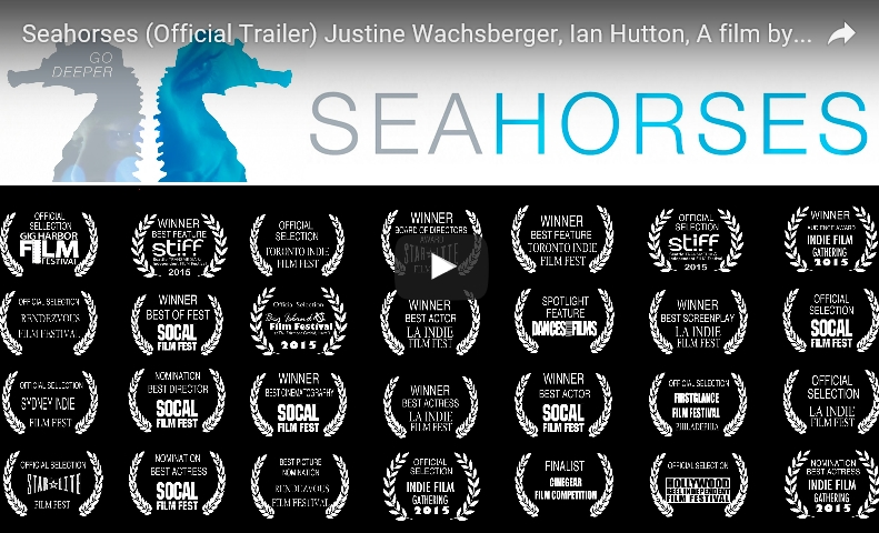 seahorses by jason kartalian
