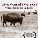 Poster little wounds warriors